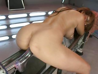 Haylee Le doggy fucking her fuck machine